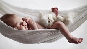 Ясельные одеяла в кроватку